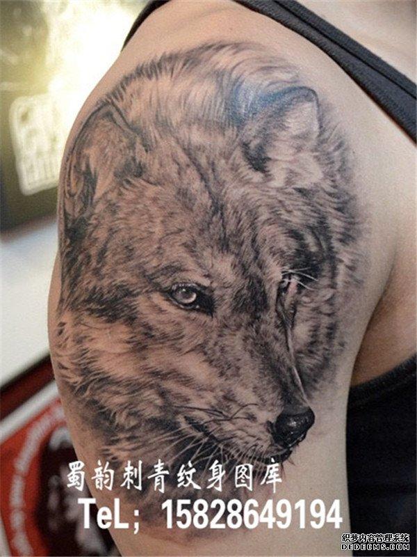 狼头纹身 胸口纹身 手臂纹身 胳膊纹身 狼头纹身